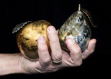 有苹果和梨金属的手 库存图片