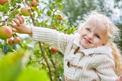 有苹果树的白肤金发的小女孩 免版税库存照片