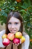 有苹果画象的女孩 女孩是愉快,成熟红色苹果收获 免版税库存图片