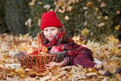 有苹果篮子的女孩在秋天森林,在黄色的谎言留下背景 库存图片