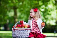 有苹果篮子的小女孩 免版税库存照片