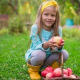 有苹果篮子的小逗人喜爱的女孩在秋天 免版税库存图片