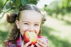 有苹果计算机的女孩在苹果树 图库摄影
