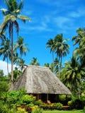 有茅屋顶的传统房子在瓦努阿岛海岛,斐济上 库存照片