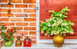 有茉莉花花的水罐 库存图片