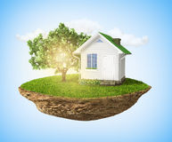 有草和树和房子浮动的美丽的小海岛 图库摄影