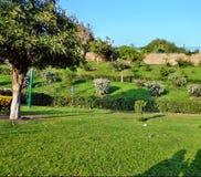 有草土地的公园庭院 免版税库存图片