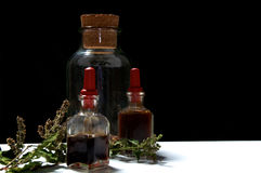 有草本萃取物和干草本的三个玻璃瓶在眼睛 免版税图库摄影