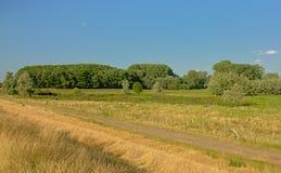 有草甸的晴朗的沼泽和树在Kalkense Meersen自然reerve,富兰德,比利时的清楚的蓝天下 库存图片