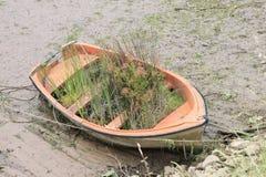 有草的小船 免版税库存照片