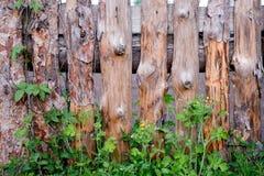 有草的老被风化的风景木篱芭 葡萄酒纹理背景 免版税图库摄影