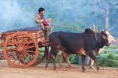 有草稿的设备的,缅甸农民 免版税库存图片