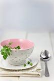 白色空的汤碗 库存照片