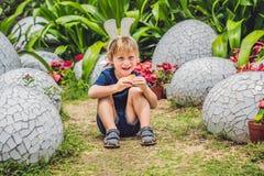 有获得兔宝宝的耳朵的逗人喜爱的小孩男孩乐趣用传统复活节彩蛋寻找,户外 庆祝复活节假日 小孩fi 图库摄影