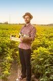 有菜的愉快的农夫在领域风景前面 免版税库存图片
