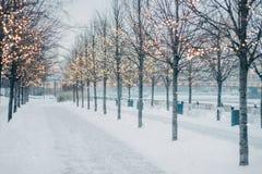 有落的雪和发光的圣诞灯bokeh的被弄脏的冬天树胡同 免版税图库摄影