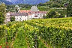 有葡萄园的修道院Neustift,布雷萨诺内,意大利 免版税图库摄影