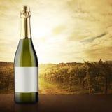 有葡萄园的白葡萄酒瓶背景的 库存照片