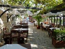 有葡萄园的餐馆 免版税库存照片