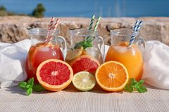 有葡萄柚和橙汁,戒毒所在海景的背景的柑橘水新饮料的三个水罐  免版税图库摄影
