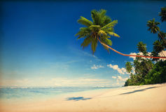 有葡萄酒作用的热带海滩天堂 免版税库存照片