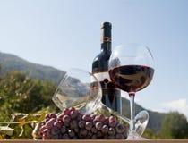 有葡萄酒杯的红葡萄酒瓶 免版税图库摄影