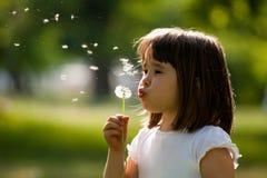 有蒲公英花的漂亮的孩子在春天公园 获得愉快的孩子乐趣户外 免版税库存图片