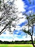有蓝天的公园 免版税库存图片