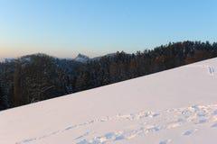 有蓝天的冬天全景 图库摄影