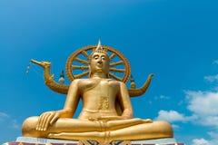 有蓝天的大菩萨雕象寺庙在背景 免版税库存图片