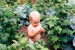有蓝眼睛的一个孩子充当村庄在夏天 免版税库存图片