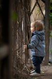 有蓝眼睛的小男孩在冬天步行 免版税库存照片