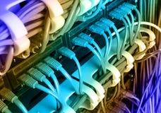 有蓝色互联网插接线的服务器机架缚住 库存图片