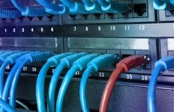 有蓝色互联网插接线的服务器机架缚住 免版税图库摄影