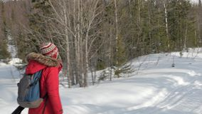 有蓝色和灰色背包步行的游人沿雪道 影视素材