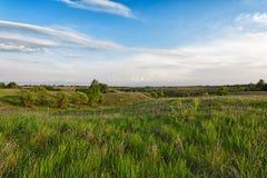 有蓝色多云天空的绿色多小山草甸 免版税库存照片