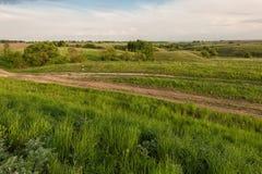 有蓝色多云天空的绿色多小山草甸 免版税图库摄影