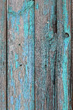 有蓝色破旧的油漆的老木篱芭 免版税库存照片