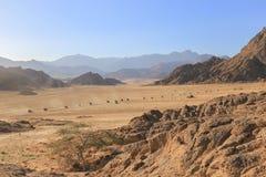 有蓬卡车方形字体自行车在沙漠 图库摄影