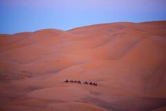 有蓬卡车横穿在撒哈拉大沙漠,摩洛哥 图库摄影