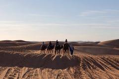 有蓬卡车横穿在撒哈拉大沙漠,摩洛哥 免版税图库摄影