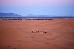 有蓬卡车横穿在撒哈拉大沙漠,摩洛哥 免版税库存图片