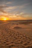 有蓬卡车脚印在撒哈拉大沙漠 免版税库存图片