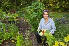 有蔬菜的可爱的家庭花匠 库存照片