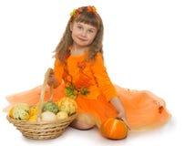有蔬菜篮子的女孩 库存图片