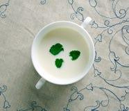 有薄荷味的大蒜味道的酸奶调味汁 图库摄影