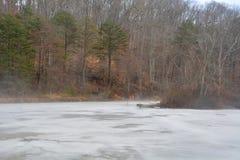 有薄雾上升的冰冷的池塘 免版税库存照片