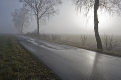 有薄雾停泊在路 免版税库存照片