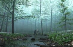 有薄雾森林的马 免版税库存图片