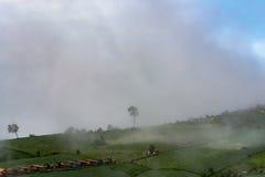 有薄雾的云彩的山本质斋戒运动 免版税图库摄影